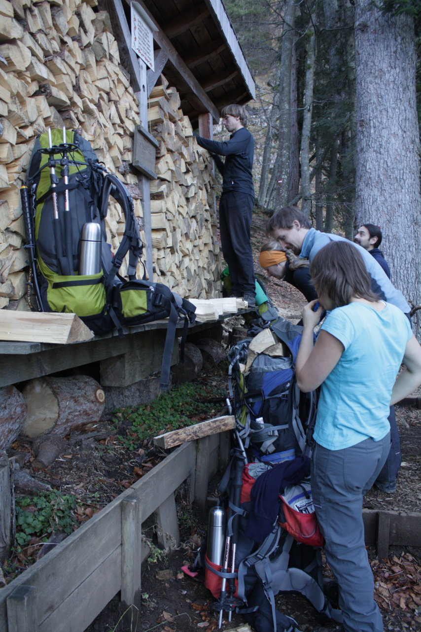 Nakládka dřeva