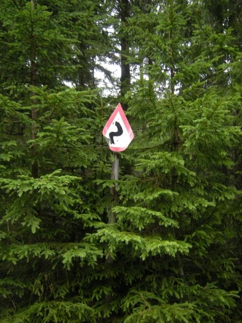 """Vtipná značka: """"Serpentiny v lese"""""""
